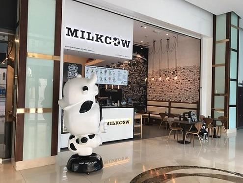 محل ميلك كاو في دبي للايسكريم