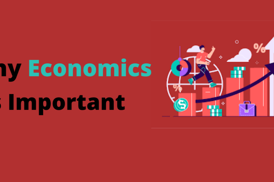 A Brief Guide On Why Economics Is Important