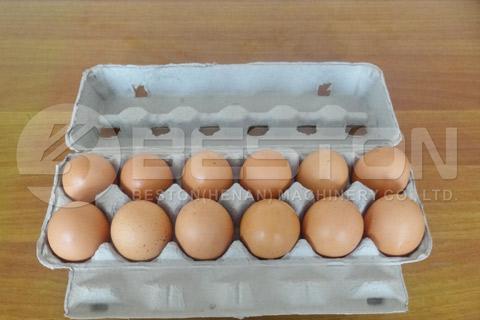 12-hole Egg Carton