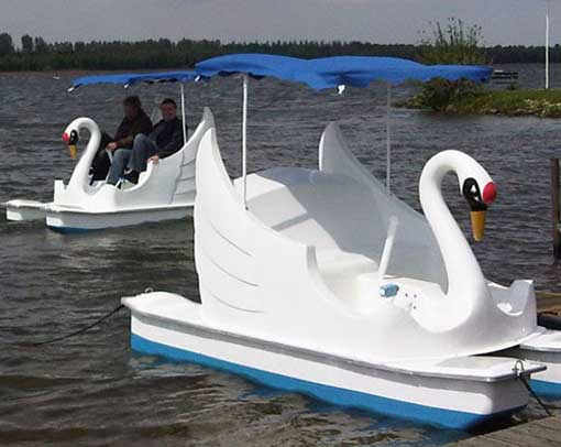 This is a white swan for the prototype design