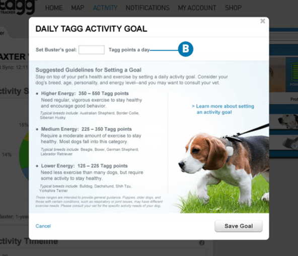 daily Tagg activity goal