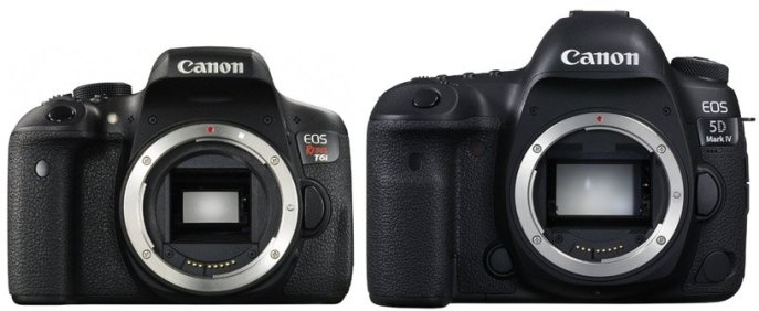 canon-aps-c-vs-full-frame