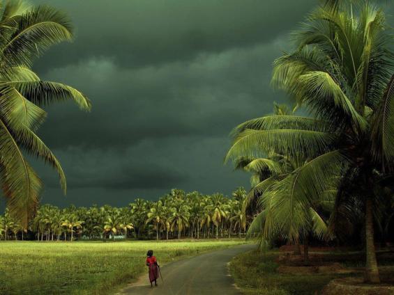 Kerala (Image courtesy-waytoindia.com)