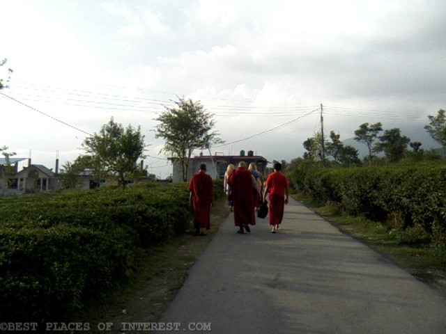 Lama's in Bir