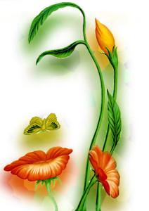 nurture-natures-hidden-beauty