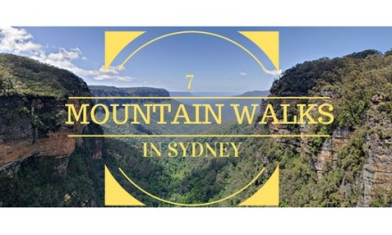 7 Recommended Mountain Walks in Sydney