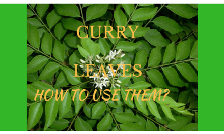 How best to use curry leaves in your cooking?