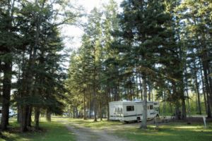 Beaver Glen Campground, Prince Albert National Park, campsite in Canada