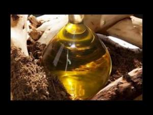 Pure Sandalwood Oil from Mysore Sandalwood Shop