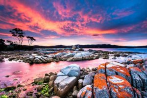 bay of fires, nature lovers