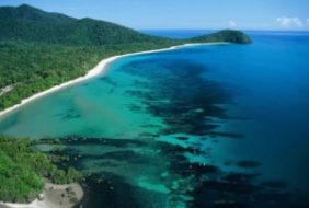 Cape Tribulation, nature lovers