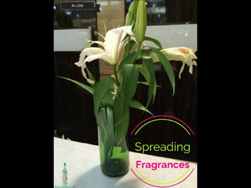Spreading fragrances with these eco-friendly gifts this Diwali