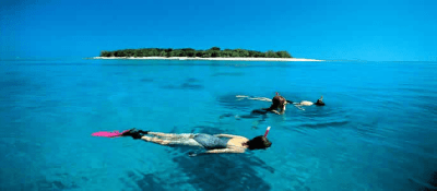 Lady Musgrave Island, Great Barrier Reef islands