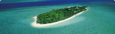 Heron Island- Great Barrier Reef Islands source university of Queensland