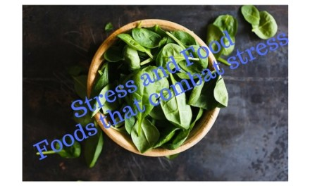 Stress and Food, foods that combat stress
