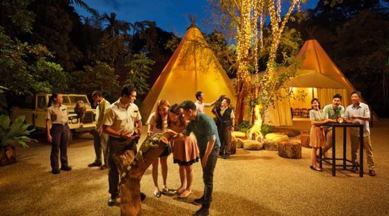 Singapore night safari, Singapore attractions