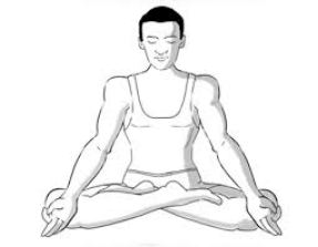 padamasana, yoga