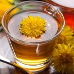 Health Benefits of Dandelion Root Tea