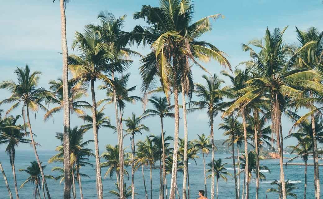 Best places of interest in Sri Lanka