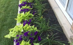 89 Best Choices Front Yard Landscaping Ideas On A Budget 21