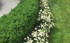 99 Small Front Yard Landscaping Ideas Low Maintenance 42