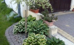 99 Small Front Yard Landscaping Ideas Low Maintenance 61