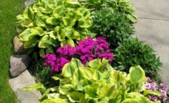 99 Small Front Yard Landscaping Ideas Low Maintenance 97