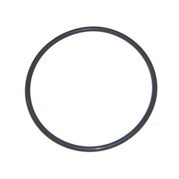 Aqua-Flo Dominator Pump Seal Plate O-Ring 92200180 O-240
