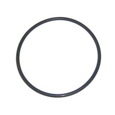 Aqua-Flo Dominator Pump Seal Plate O-Ring 92200180 O-240