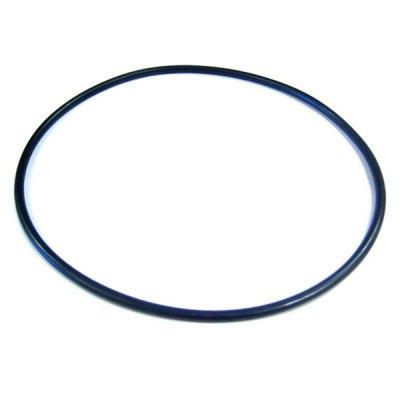 Max-Flo II Hayward Pump Lid O-Ring SPX2700Z4