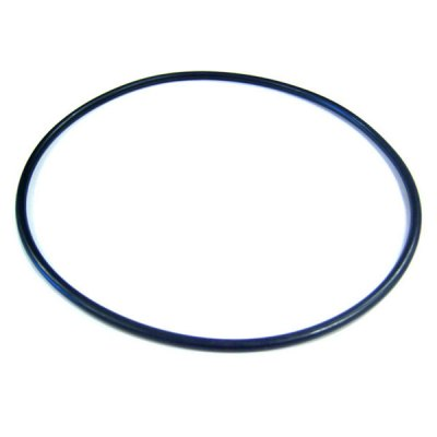 Pentair SuperFlo VS Pinnacle Pump Seal Plate Bracket O-Ring O-465 355619