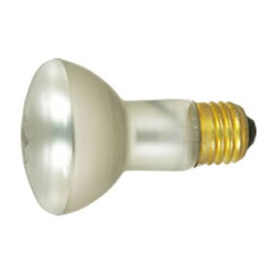 Pool and Spa Light Bulb Feit Electric S-12 100W 100R20