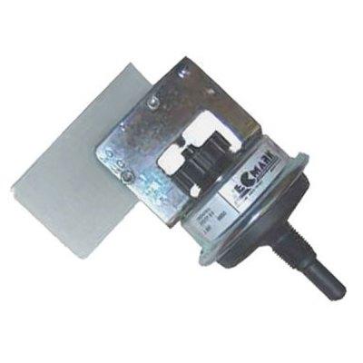 Raypak Heater 11 PSI Pressure Switch 009133F