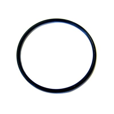 SunLite Sta-Rite Light O-ring 05601-0014