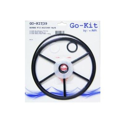 Aladdin Go Kit Hayward SP-715 Multiport Valve GO-KIT39