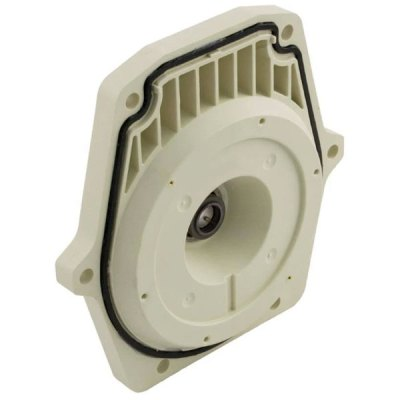 Pentair IntelliFlo & WhisperFlo Pump Seal Plate Kit 350202