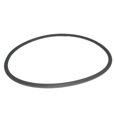 Pentair Purex FNS Fiberglass Filter Tank O-Ring 195008 O-420