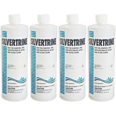 Silvertrine Algeacide Leisure Time 32oz. 403303 - 4 Pack