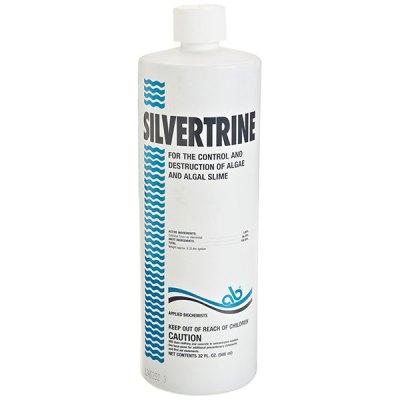 Silvertrine Algeacide Leisure Time 32oz. 403303
