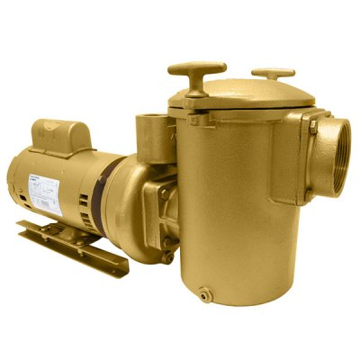 Swimming Pool Spa Aqua-Flo AC-Series Brass Pump 3 HP 3PH 10130000