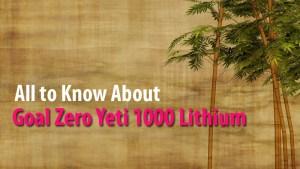 Goal Zero Yeti 1000 Lithium