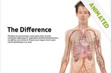 Anatomy Powerpoint Template