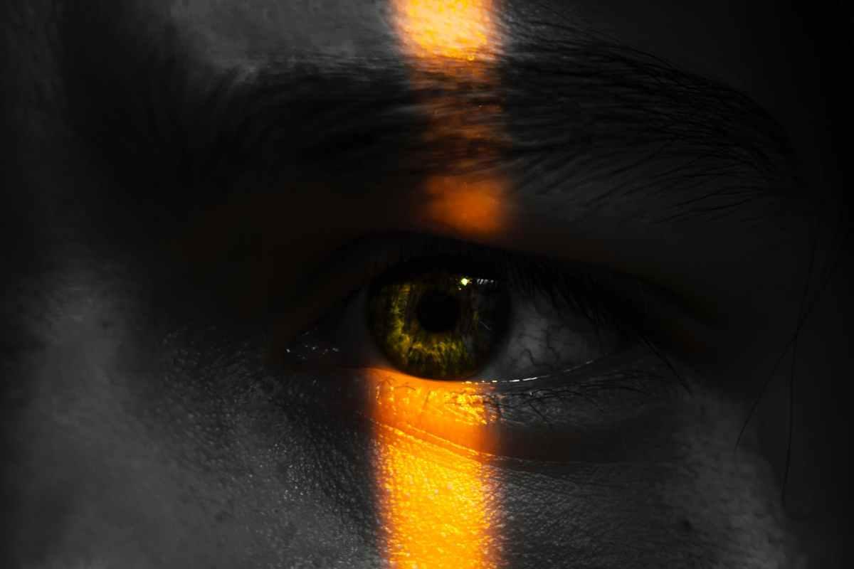 left human eye
