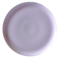 Coup Plate 8″-White