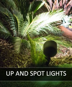 Up & Spot Lights