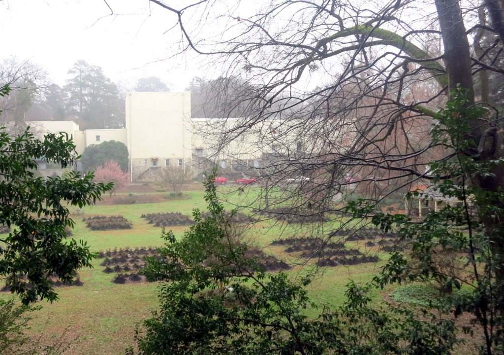 Best Raleigh Neighborhoods, Inside-the-Beltline, Wade, Raleigh Little Theater and Rose Garden. Foggy Winter Day