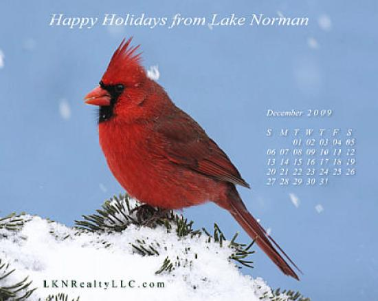 Lake Norman Real Estate's Dec09Wallpaper Calendar Preview
