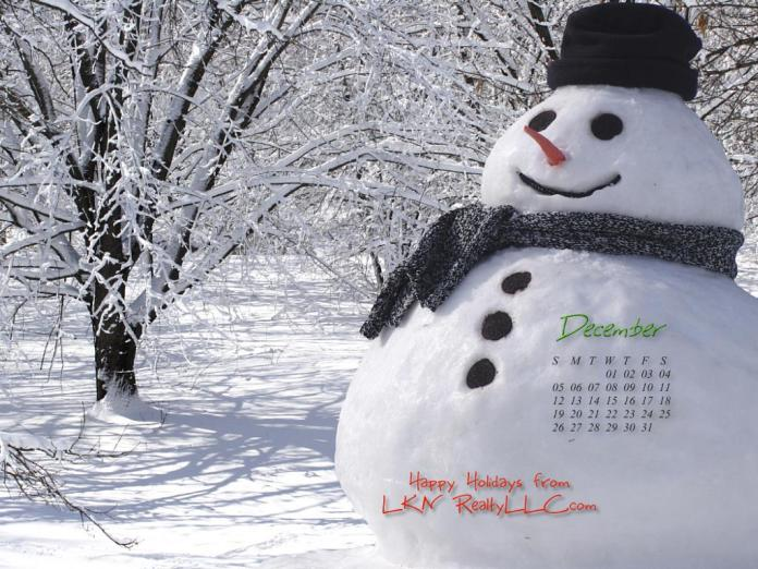 Lake Norman Real Estate's December 2010 Calendar