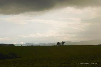 Gentle hills and crops