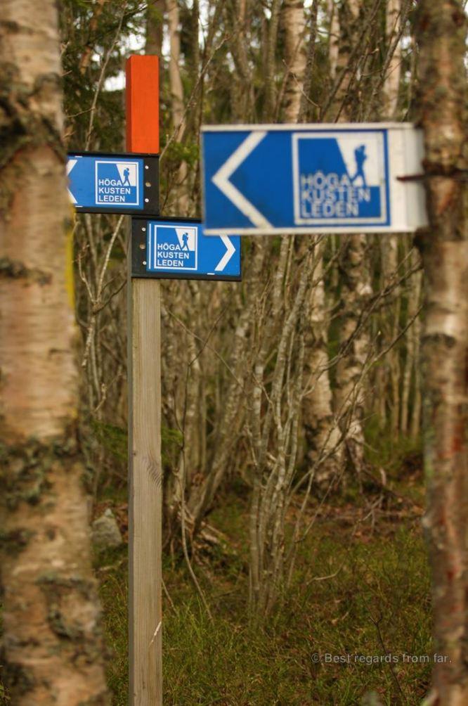 Hiking the High Coast trail (Hoga Kusten) in Sweden